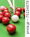 Snooker 75234079