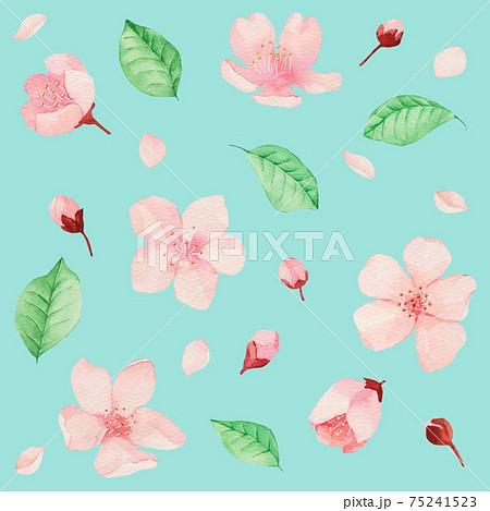 벚꽃 수채화 패턴 75241523