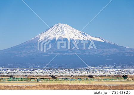 「静岡県」富士川河川敷から眺める富士山と新幹線 75243329