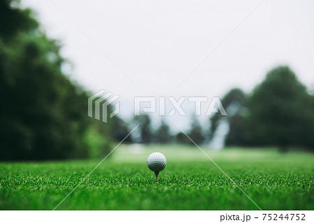 ゴルフボール 75244752