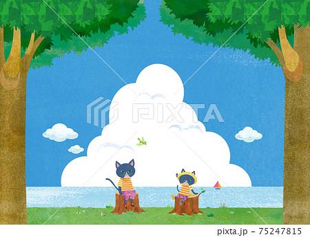 夏の風景 75247815
