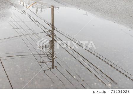 道路にできた水溜に映った電信柱と電線 75251028
