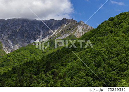 新緑の国立公園大山__鍵掛峠展望台にて 75259552