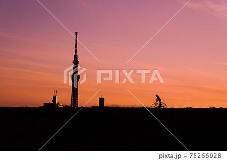 夕方の土手を走る自転車とスカイツリー 75266928