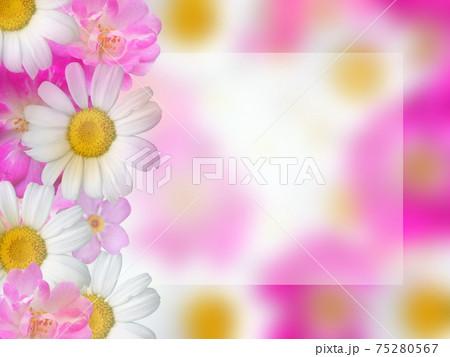 全体に「ぼかし」がかかった四角いコピースペースのある、白とビンク色の花寄せ 75280567