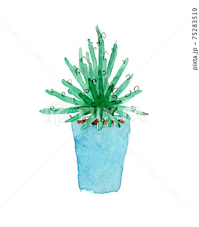 観葉植物(アガベ)の鉢植えの水彩イラスト 75283519