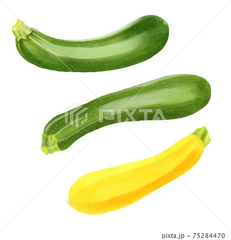 水彩風 緑と黄色のズッキーニ 一本ずつ 75284470