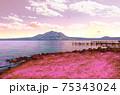 桜の花びら舞う山 75343024