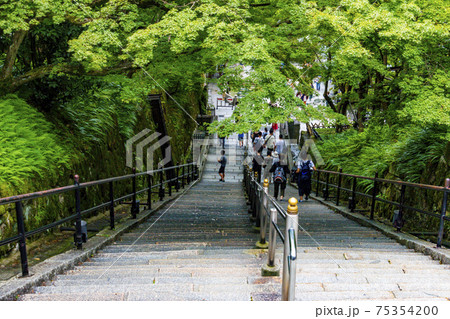 音羽山清水寺境内の階段(京都市東山区清水) 75354200