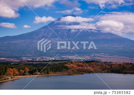 田貫湖からの絶景富士山 75365582