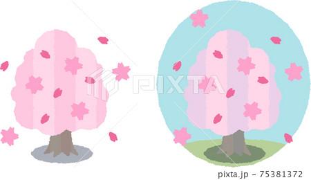 春の桜の木ほんわか調 75381372