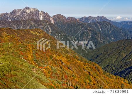秋色の爺ヶ岳稜線から見る剣岳と毛勝三山 75389991