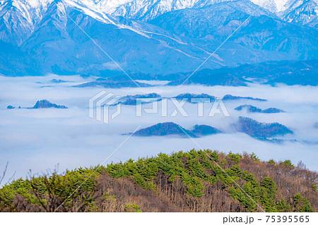雲海と北アルプス 【長野県】 75395565