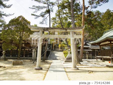 今宮神社 月読社・地主稲荷社へと続く石段 75414286
