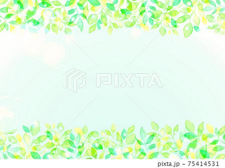 水彩で描いた新緑の背景イラスト 75414531