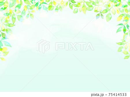 水彩で描いた新緑の背景イラスト 75414533