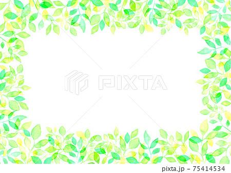 水彩で描いた新緑の背景イラスト 75414534