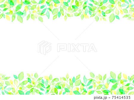 水彩で描いた新緑の背景イラスト 75414535