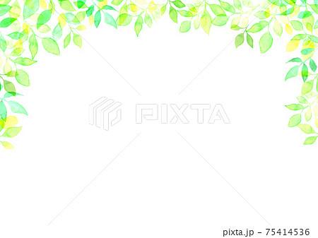 水彩で描いた新緑の背景イラスト 75414536