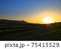 美しい風景と夕焼け 75415529