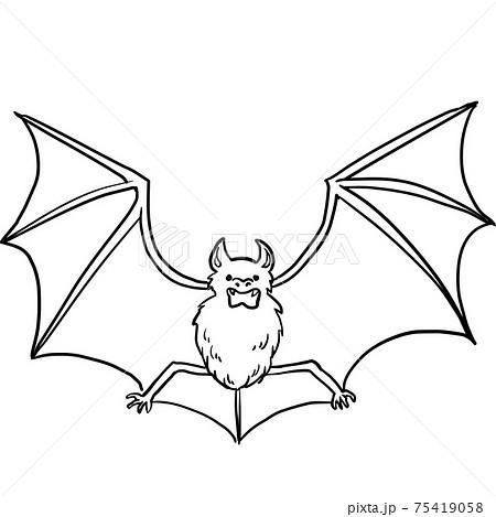 シンプルなコウモリの線画イラスト 75419058