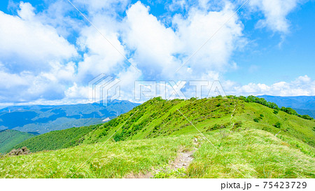 鷲ヶ峰登山(夏):稜線 75423729