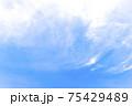 雲のある青空 75429489