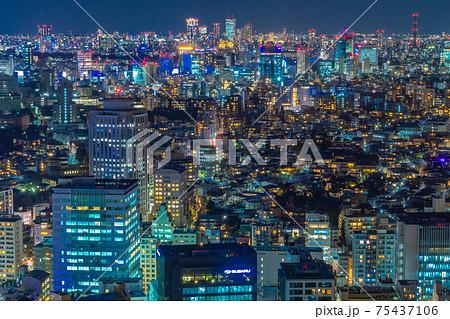東京の都市夜景(恵比寿から青山方向、都心の住宅街) 75437106