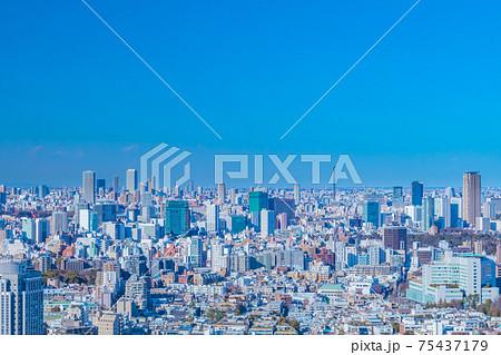 東京の都市眺望(広尾、青山方向) 75437179