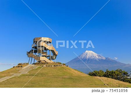 静岡田子の浦_富士山ドラゴンタワーの風景 75451056