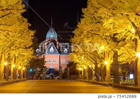 北海道_赤レンガ旧庁舎と銀杏並木の絶景 75452689