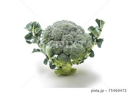 ブロッコリー 健康野菜 緑黄色野菜 採れたて新鮮野菜 75469472