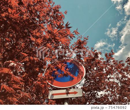 紅葉した樹と道路標識(駐車禁止) 75476092
