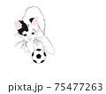 ネコとサッカーボール 75477263