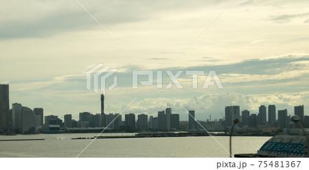 飛行機から東京の風景(東京湾、スカイツリー) 75481367