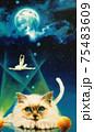 蒼い夜の妖精 75483609