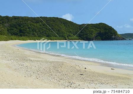 座間味の青い海15 古座間味ビーチ 75484710