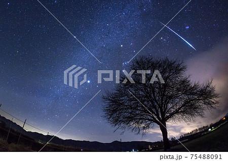 長野県・野辺山 ふたご座流星群の流星 75488091