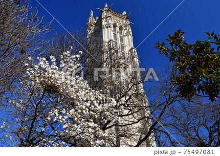 フランス・パリ、モクレンとサン・ジャックの塔 75497081