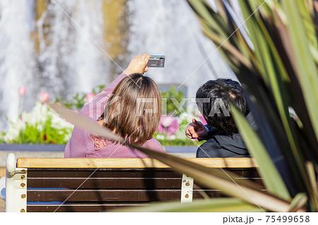 噴水のある公園のベンチで自撮りをする男女 75499658