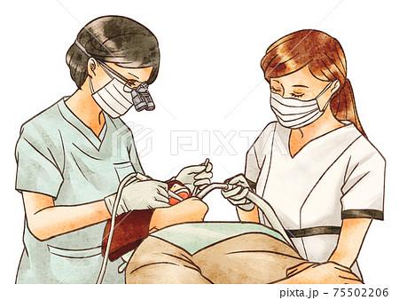 歯医者さんの治療(女性医師) 75502206