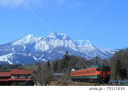 しなの鉄道115系電車湘南色 快晴の妙高山バック 75515630