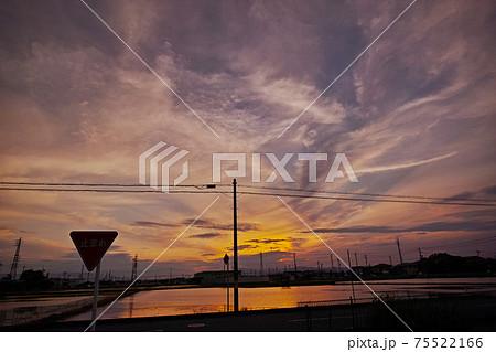 水田に反射する夕焼け空と道路標識 75522166