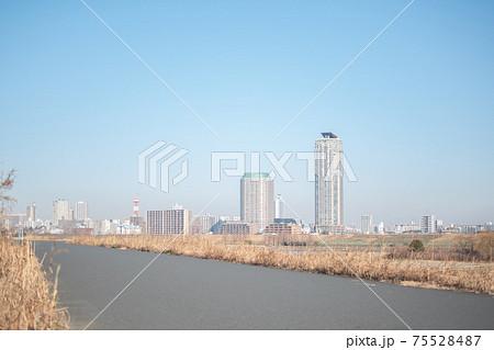 荒川河川敷の遊歩道/東京都北区志茂 75528487