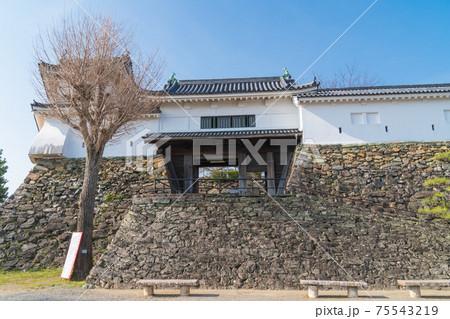 天守閣の入口と二の門櫓(和歌山城) 75543219