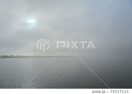 朝霧の渡良瀬遊水地の谷中湖に太陽 75557113