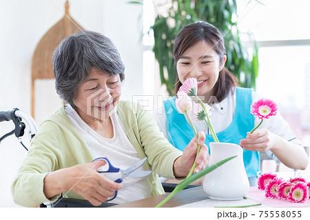 介護イメージ フラワーアレンジメントを楽しむシニア女性と介護士 75558055