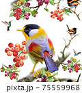 Birds on berry branch seamless pattern on white background 75559968