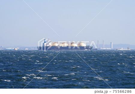 東京湾を行くLNGタンカーの景色 75566286