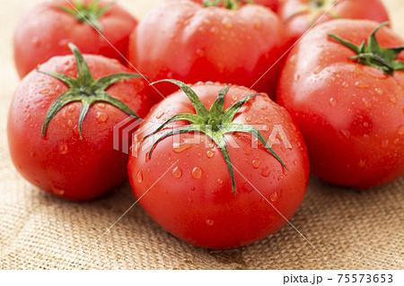 トマト 75573653